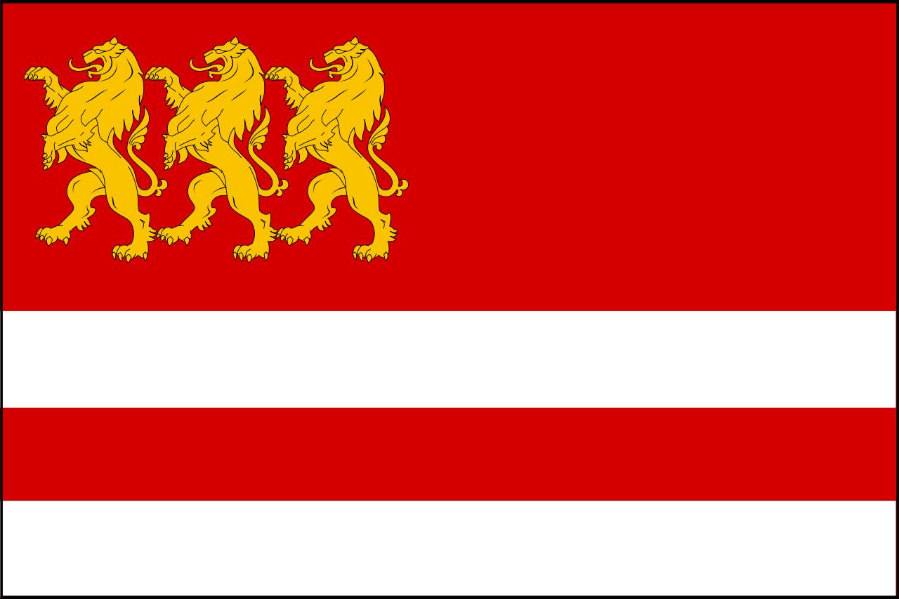 marneulis-municipalitetis-drosha